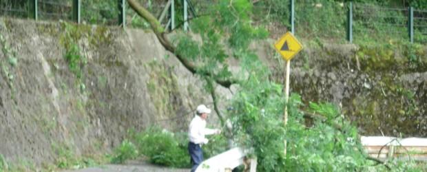 7月27日、主要地方道長野戸隠線整備促進期成同盟会による沿線の支障木伐採作業が行われました。 日中の暑い中の作業となりましたが、約40名の沿線役員の皆さんが参加され、道路交通の安全確保のために作業されました。 又、高い場...