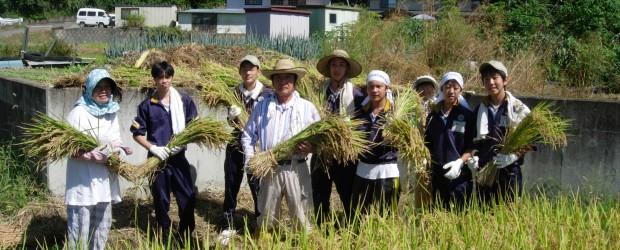 9月7日、千葉県の市川市立東国分中学校の皆さんが、農家民泊に訪れました。  今回は初秋の心地よい青空の中、105名の生徒の皆さんが 地区内の受入れ家庭に分かれて農作業等を体験しました。  今年から芋井地区で受入れが始ま...
