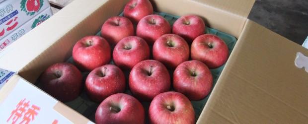 芋井のりんごも、いよいよ「ふじ」の収穫期を向かえ、11月20日には桜にある農協の選果場で「ふじ祭り」が行われました。 会場では獲れたての「ふじ」や「シナノゴールド」のほか、地域の野菜などの直売が行われ、地区外からも多くの...