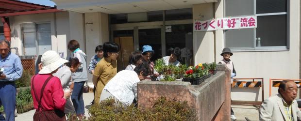 """5月18日(土)、改善センター入口で『お花づくり""""好""""流会』を開催しました。  この交流会は、花の苗木の交換等を通して集まった地域の皆さんが交流していただく事を目的として開催したものです。  当日は大変良い天気に恵まれ..."""