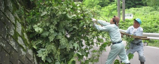 7月25日(木)、長野戸隠線整備促進期成同盟会による沿線の支障木伐採作業が行われました。 日中の暑い中の作業となり、また終了間際のどしゃぶりの雨の中沿線役員の皆さんが参加され、道路交通の安全確保のため 作業されました。 ...