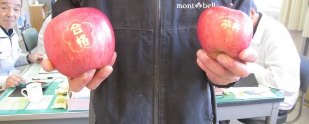 芋井地区 地域きらめき隊と地域おこし協力隊のコラボ企画として行った「合格りんご」を収穫しました。 この企画は、古川地域おこし協力隊員が栽培しているりんごに『合格』のもじが入ったシールを貼って、出来上がったりんごを 西部中...