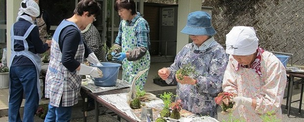 5月28日(火)、苔玉づくり講座を開催しました。 3種類の花材で一人3つの苔玉を作りました。 後半は、芋井小の2年生も加わり、地域の方にサポートしてもらいながら一緒に作 りました。