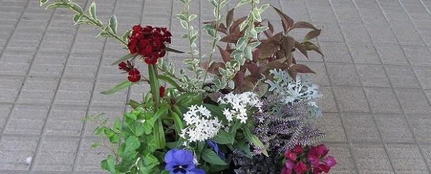 令和2年6月6日(土)午前10時から、芋井公民館でガーデニング講座を開催します。 きれいな花の寄せ植えが出来ます。 毎年人気の講座です。お早めに芋井公民館へお申し込みください。 詳しくはこちらをご覧ください